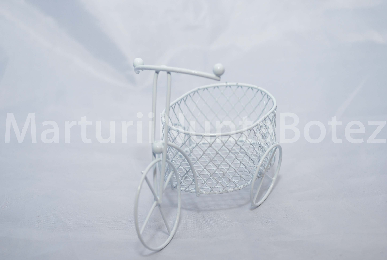marturie_nunta_sau_botez_bicicleta_metal_cos_oval2