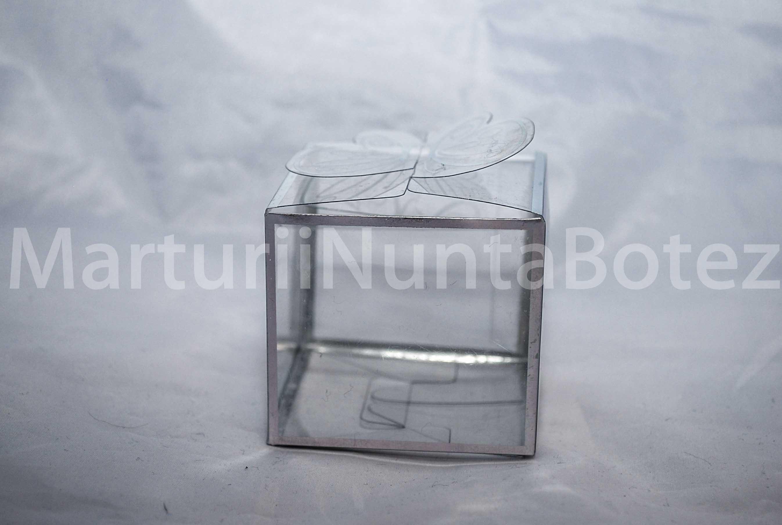 marturie_nunta_sau_botez_cutie_plastic_margini_argintii6