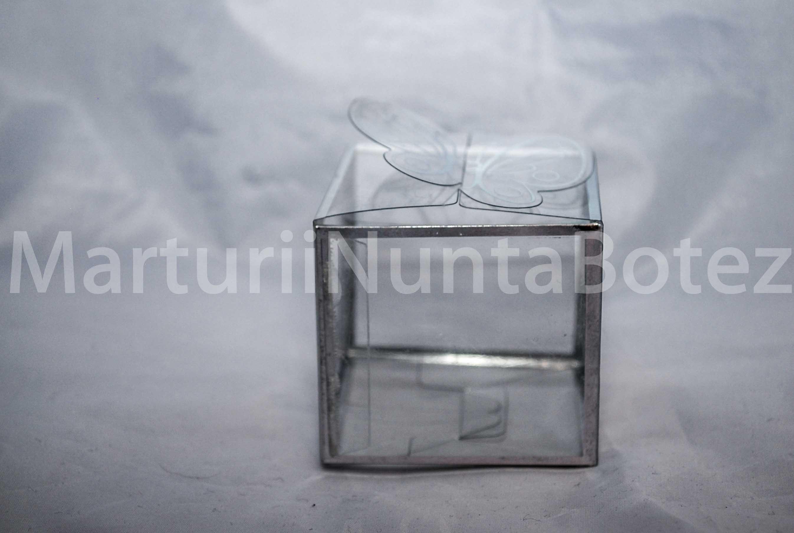 marturie_nunta_sau_botez_cutie_plastic_margini_argintii7