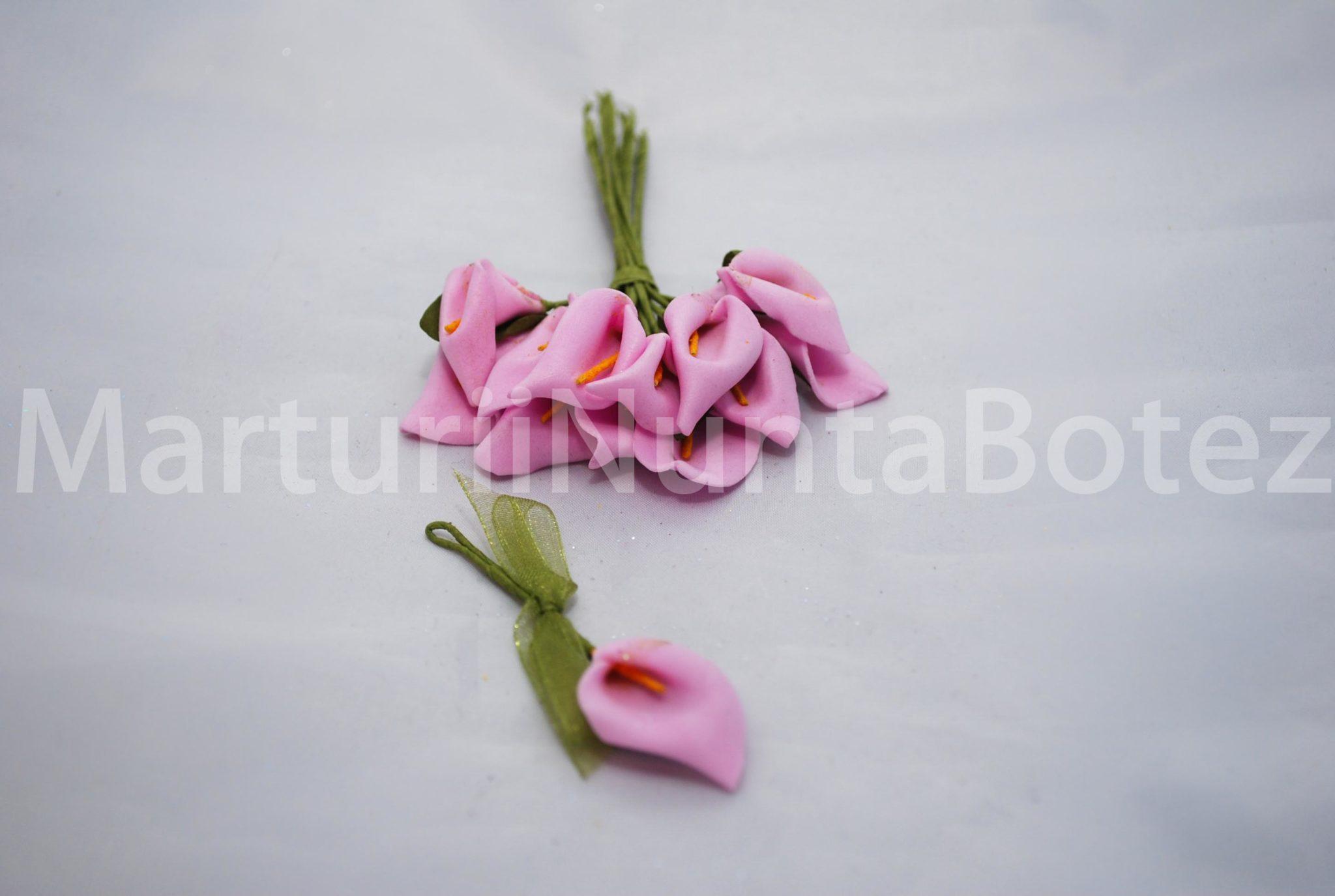 marturii_nunta_cale_patru_culori10