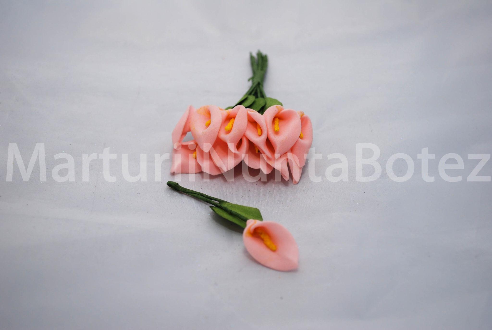 marturii_nunta_cale_patru_culori7