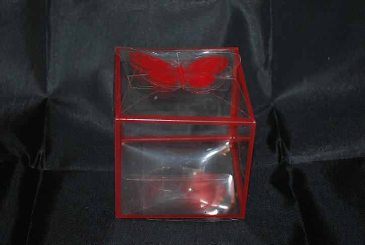 marturii_nunta_cutie_cadou_plastic_transparenta_margini_rosii4