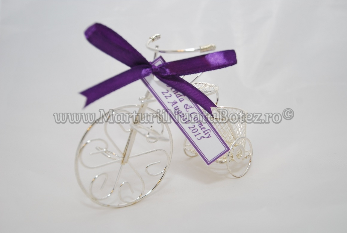 Marturie_nunta_bi cicleta_metalica_argintie_model_deosebit2