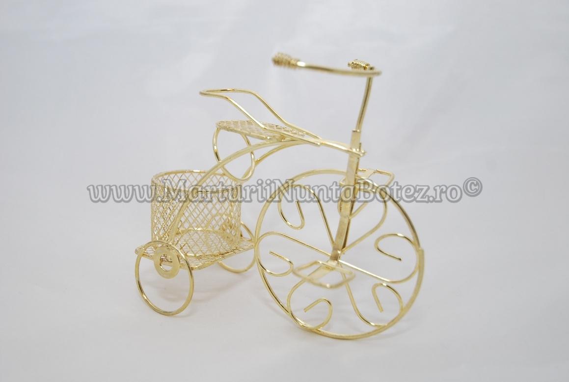 Marturie_nunta_bi cicleta_metalica_aurie_model_deosebit7